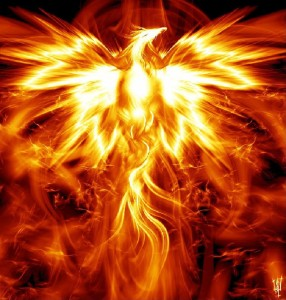 There is Only One Phoenix Bird, the Bird of Fire